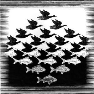 Sky and Water by MC Escher